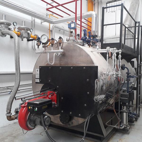 Instalaciones de calderas de vapor, tuberías, depósitos, colectores y chimeneas.